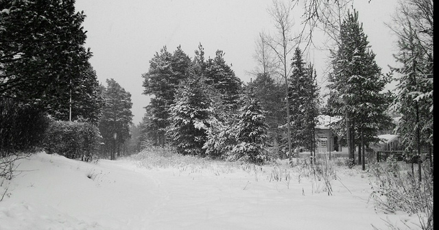 """Winter and Snow - Finland/Oulu"" by Mika Kangas"